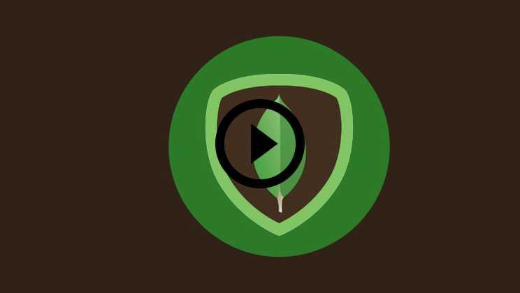 MongoDB Certification Video1