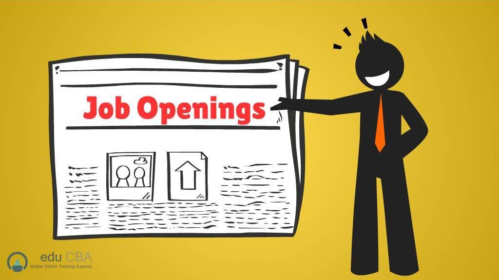 Job-Hunting-methods...