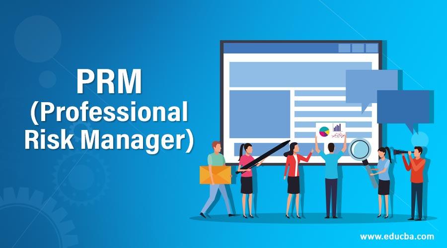 PRM (Professional Risk Manager)