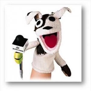 IPO Process - pets.com