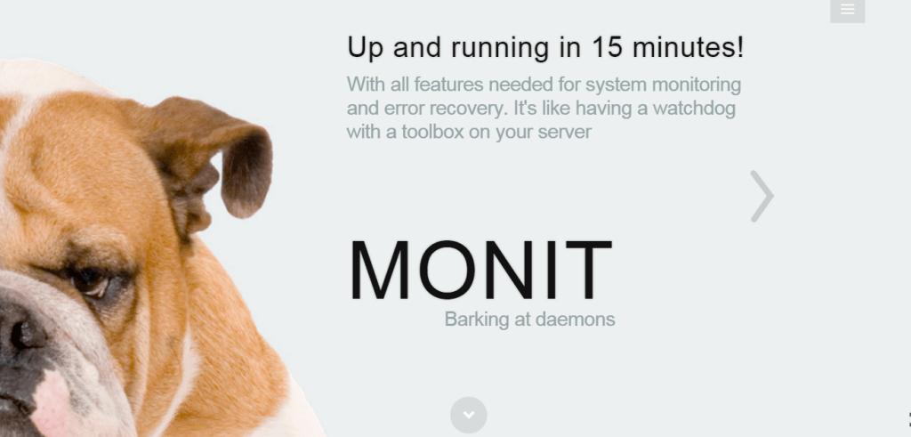 Web Development Tools For Beginner - Monit
