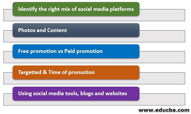 social media strategy plan and Tools