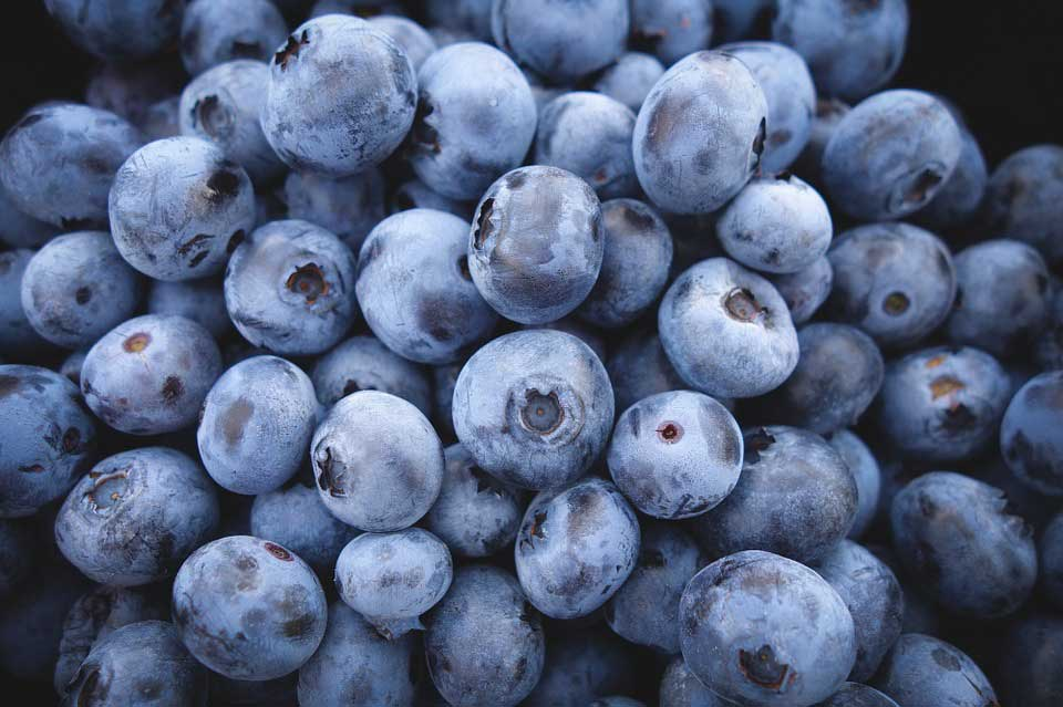 Healthy diet meals - Blueberries