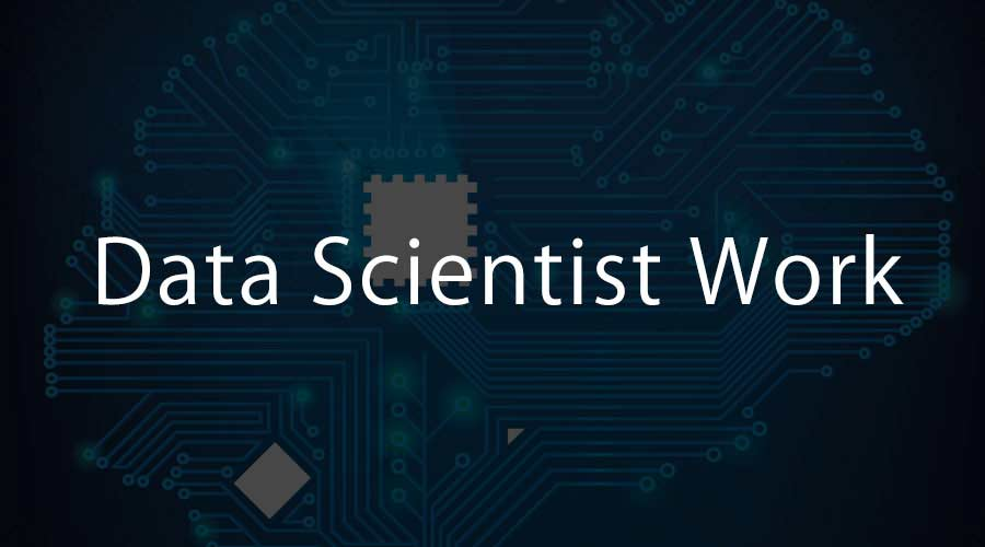 Data Scientist Work