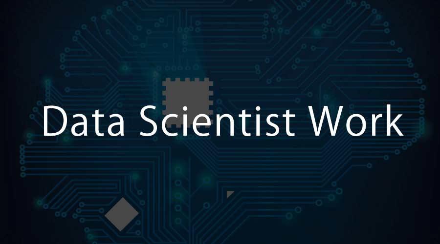Data Scientist Work