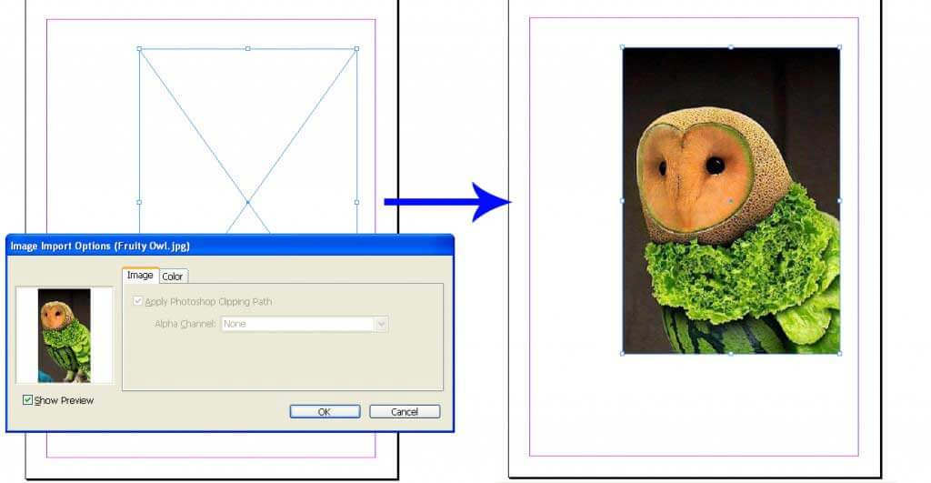 Importing the image into an existing frame
