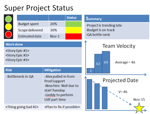 Project Management Status Report