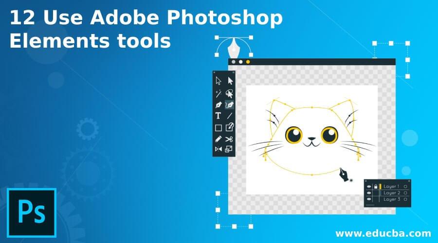 12 Use Adobe Photoshop Elements tools