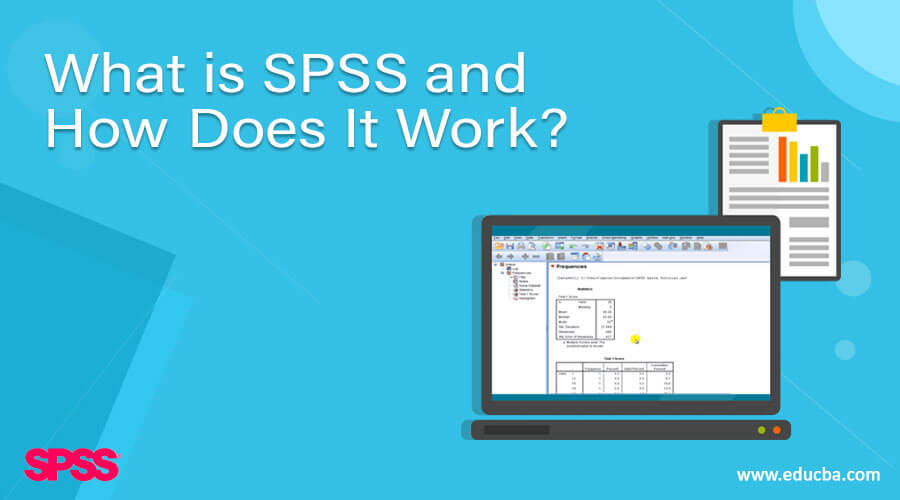 What is SPSS and How Does It Work?