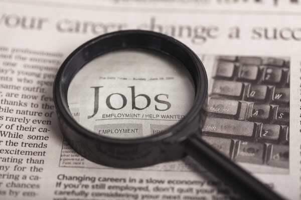 job hunting 1