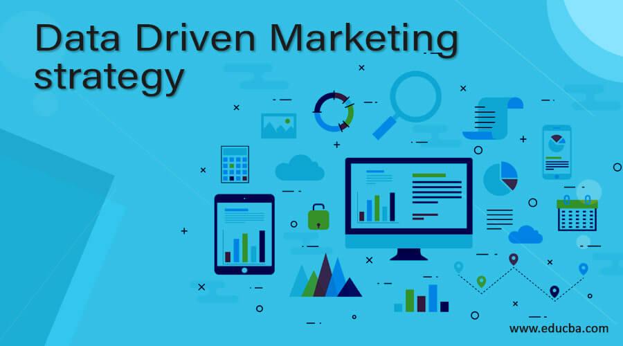 Data Driven Marketing strategy