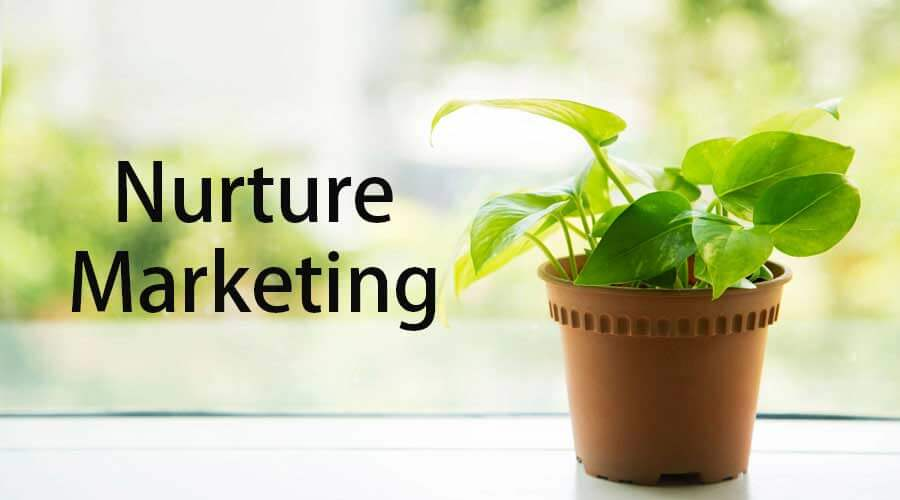 Nurture-Marketing
