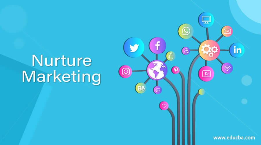 Nurture Marketing