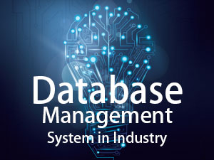 4 Important Roles of Database Management System in Industry
