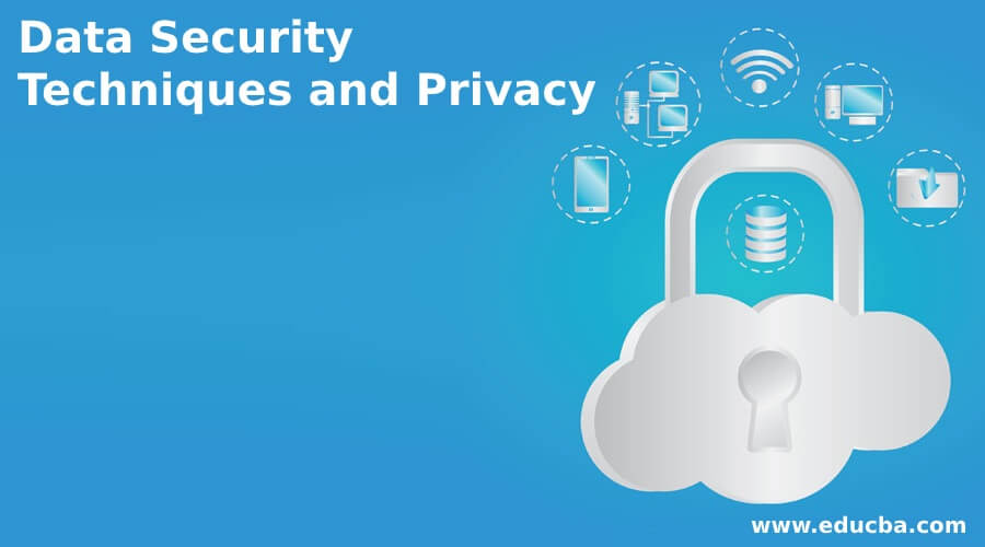 Data Security Techniques and Privacy