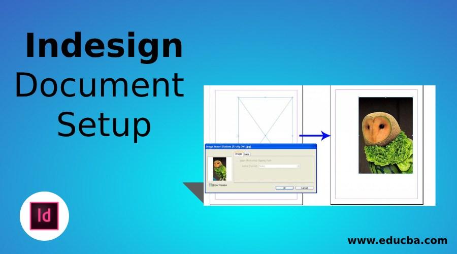 InDesign Document Setup
