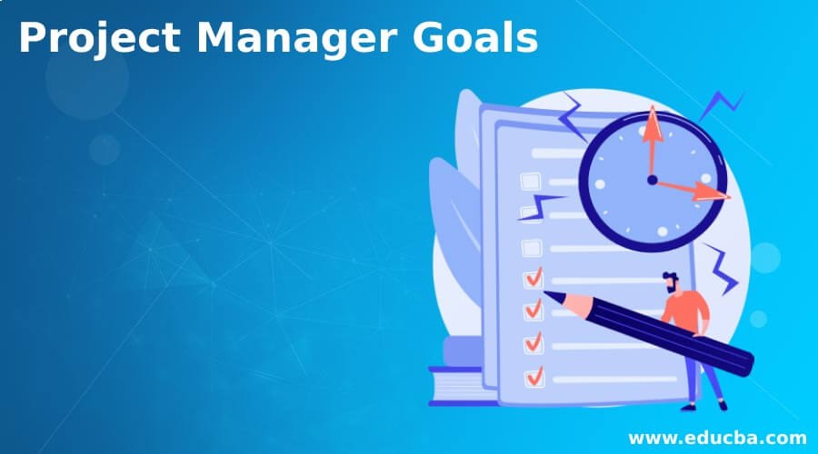 Project Manager Goals
