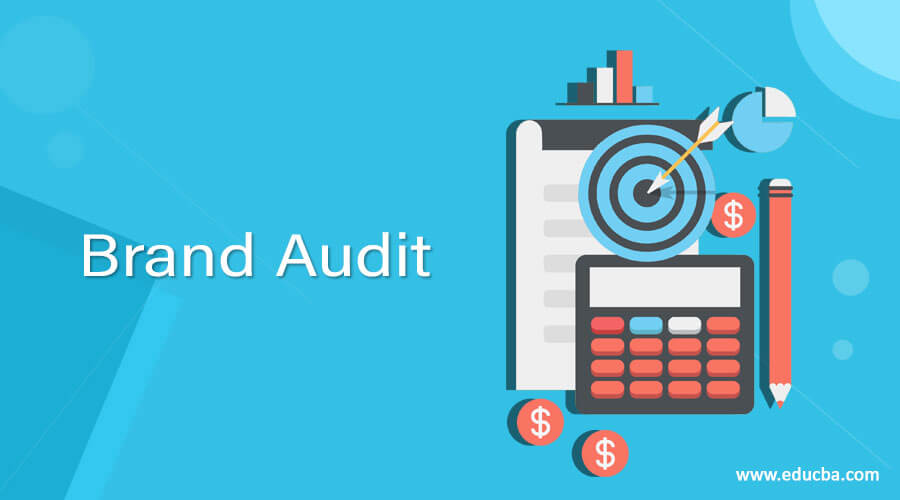 6 Important Steps To Conduct a Brand Audit Correctly