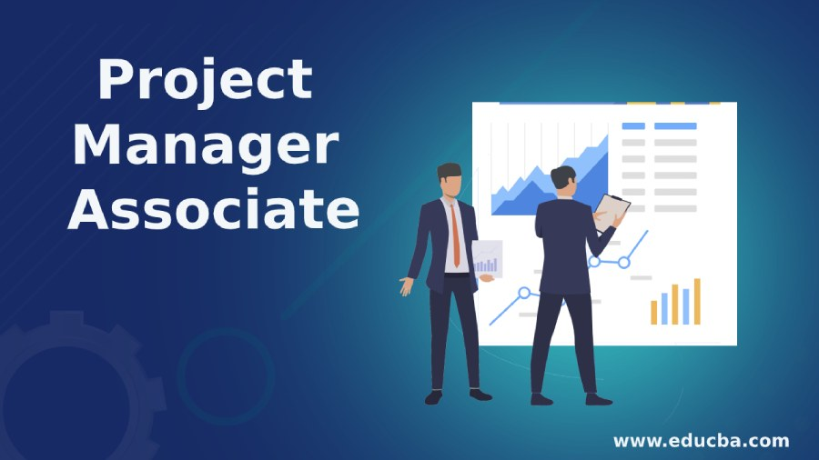 Project Manager Associate