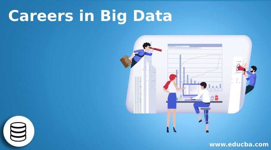 Careers in Big Data