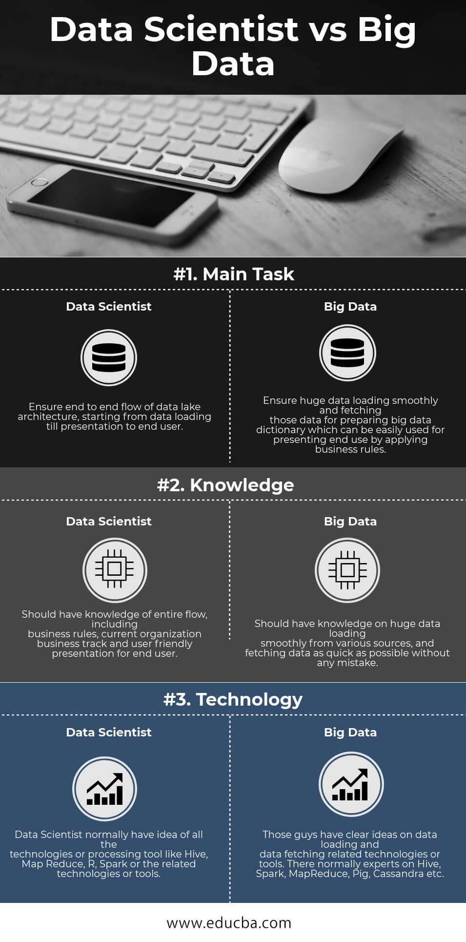 Data Scientist vs Big Data Infographics