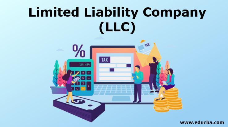 Limited Liability Companies - LLC Basics