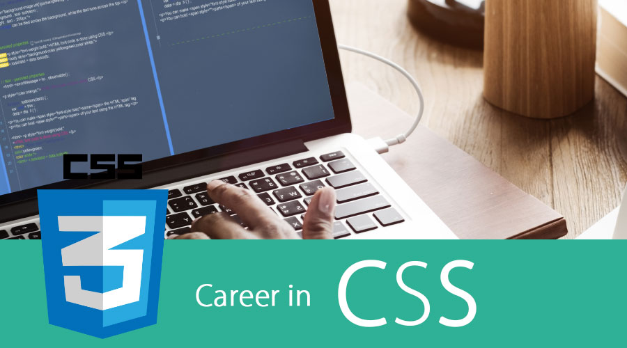 Career-In-CSS