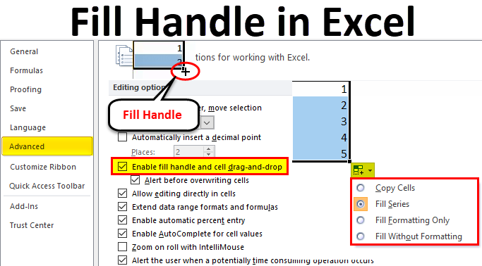fill handle in excel  examples