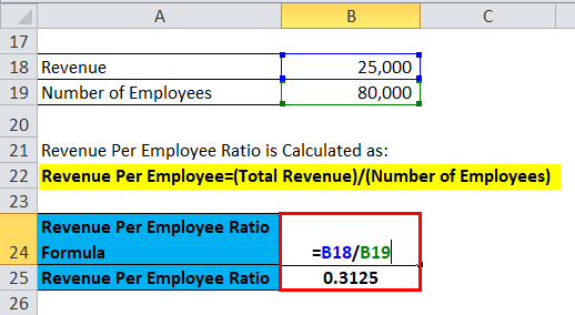 Revenue Per Employee Ratio Example 1