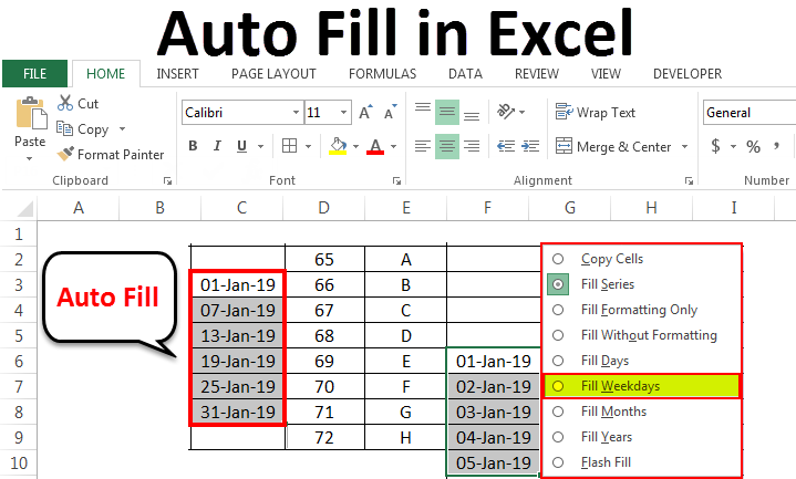 Auto Fill in Excel
