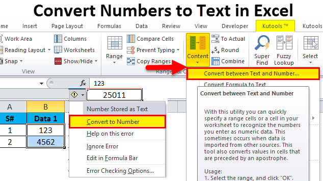 Converting Numbers to Text in Excel