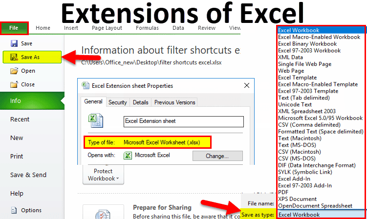Extensions of Excel | Types of File Formats ( XLS, XLSX