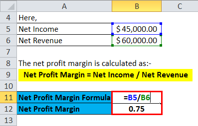 Calculation of net profit margin