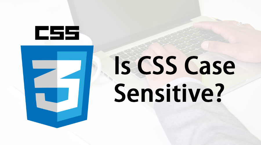 Is CSS Case Sensitive | Know The Features And Benefits Of CSS