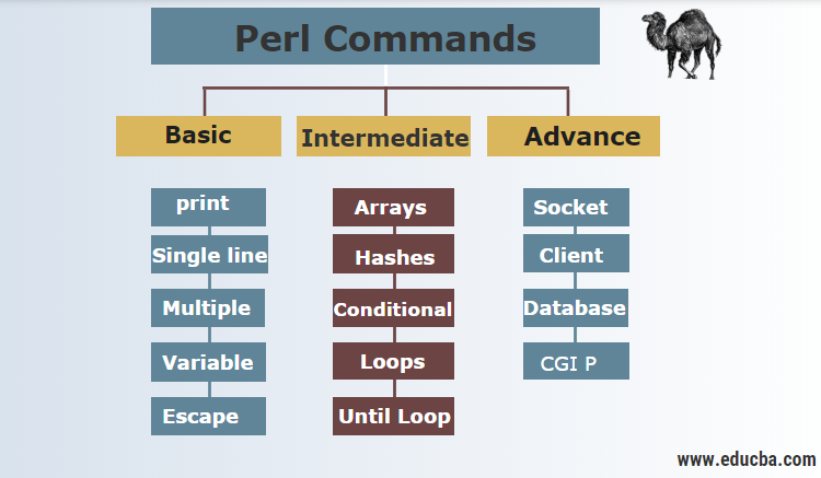 Perl Commands