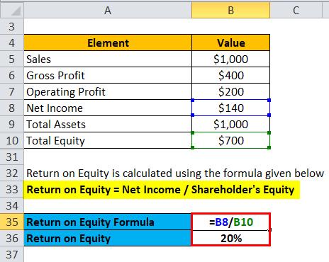 Profitability Ratios Example 1-6