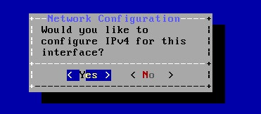 ipv4 interface