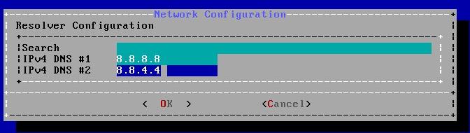 DNS server settings:
