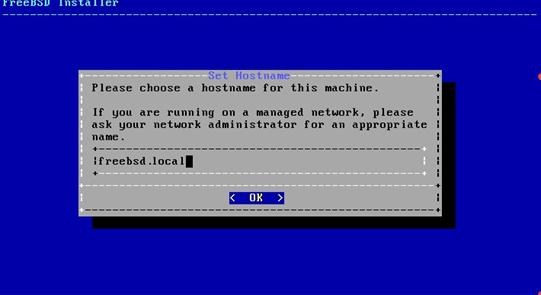 Set hostname for the system