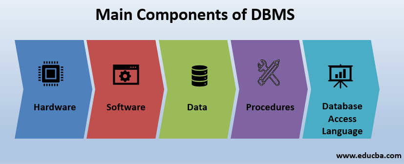Main Components of DBMS