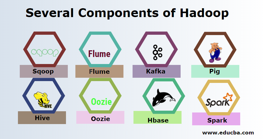 Several Components of Hadoop