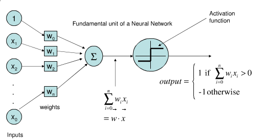 Fundamental Unit