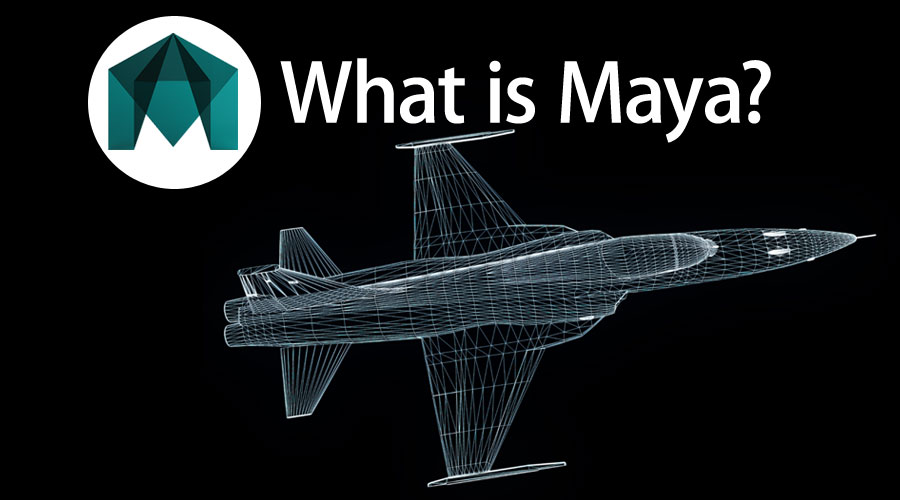 What Is Maya