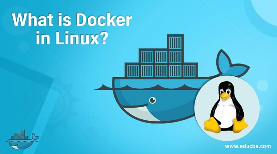 What is Docker in Linux?