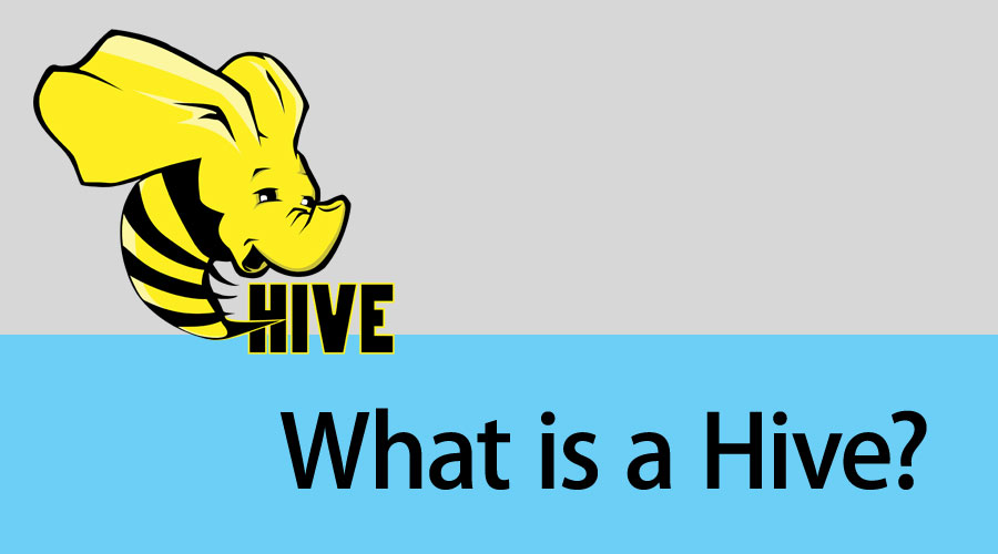 What is a Hive