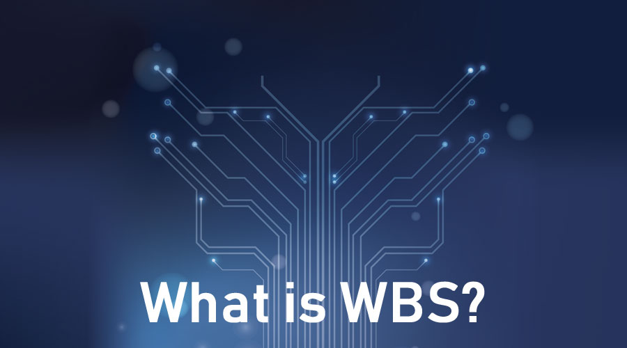 What-is-WBS