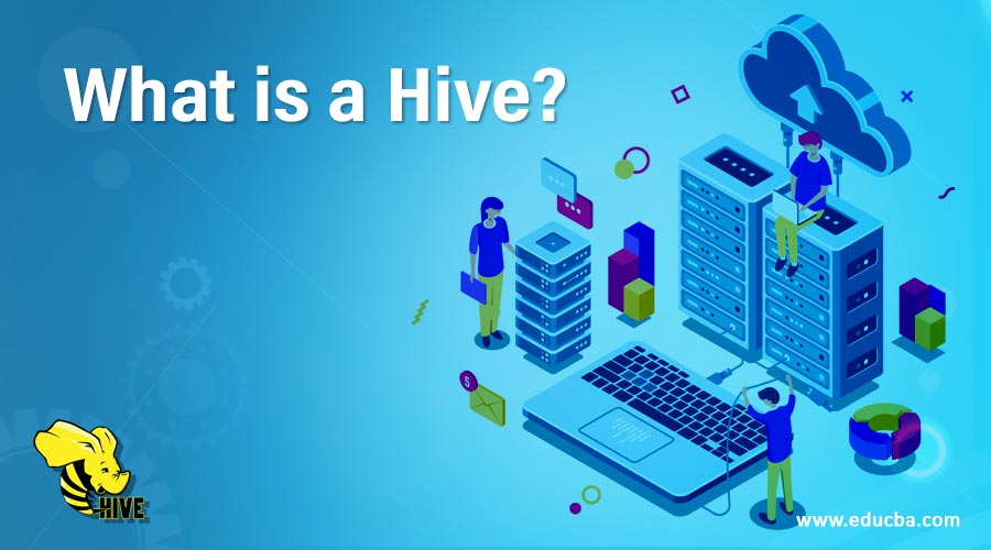 What is a Hive?