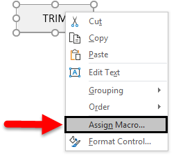 Assign Macro to Renamed Button