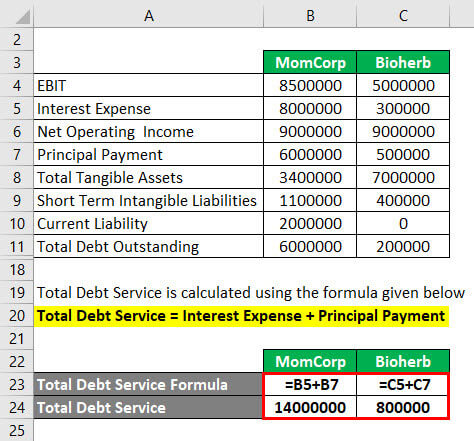 Calculation of Total Debt Service Example 3