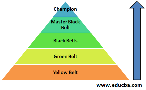 Different Belts in Six Sigma